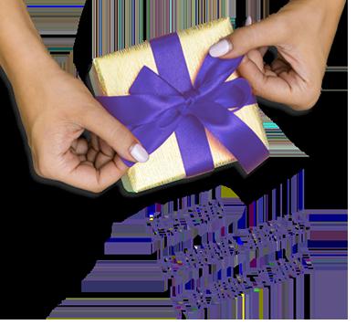 Sélection de bonnes adresses et de bons plans